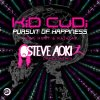 Pursuit Of Happiness (Steve Aoki Dance Remix)