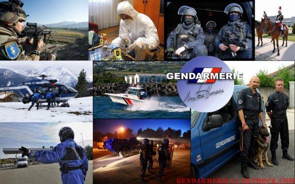 Les unités de la Gendarmerie
