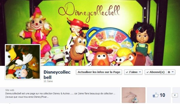Ma Page Facebook de mes collections :)