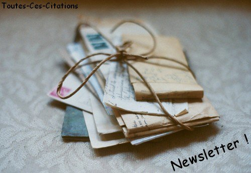 Newsletter ! :D