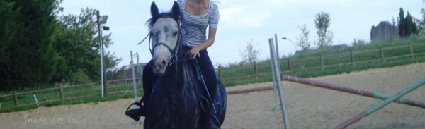 «Un cheval a une beauté infinie»