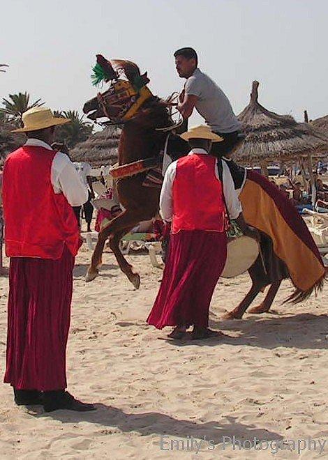 Tunisie 2009.