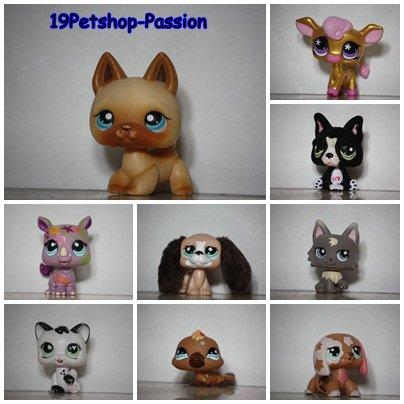 Qu'est-ce qu'un Littlest PetShop ?