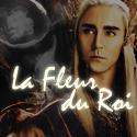 Photo de La-Fleur-Du-Roi