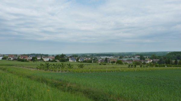 Montignac 2011.