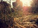 Photo de snapshots-c