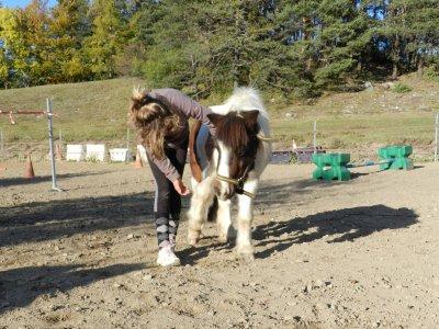 Cours du 22.10.2011 : Séance de cirque et d'éthologie !!! (  Cristal et moi)