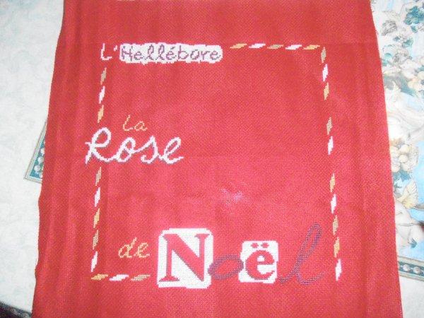 La rose de noel