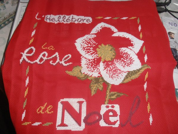Rose de noel suite 2