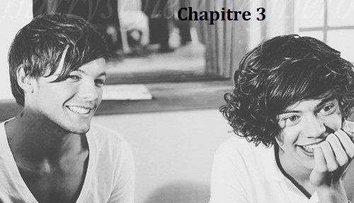 CHAPITRE 3 : AGREABLE SOIREE