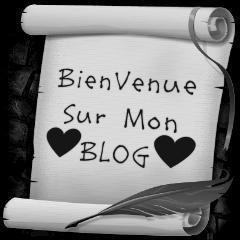 bonjour sur blog