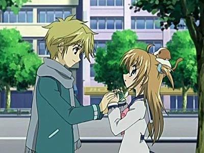 seiji et kilari est-ce l'amour