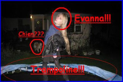 Observation d'une photo d' Evanna Lynch