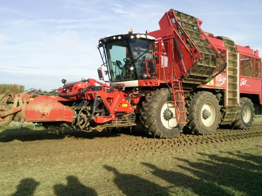 machine a bettrave agrifac