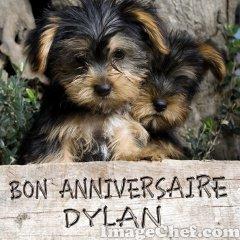 Bon Anniversaire Dylan Coucou Tout Le Monde