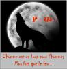 Fire--Wolf