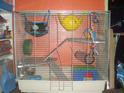 Une de mes cages, qui ne sert plus trop.
