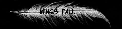 Wings Fall, chapitre 8