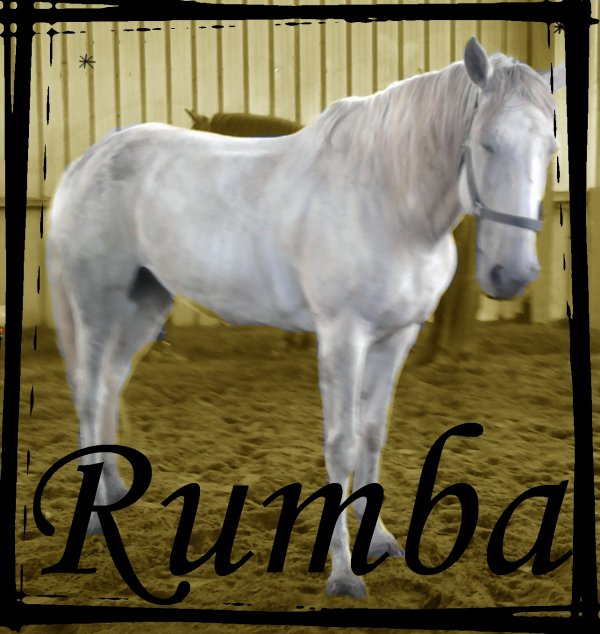 Rumba ♥ Rumba ♥ Rumba