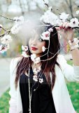 Pictures of sirusho100
