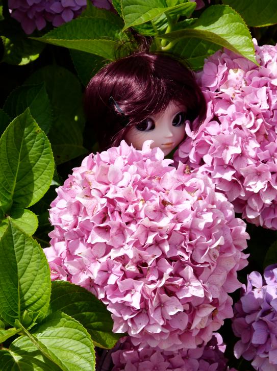 Le dire avec des fleurs...