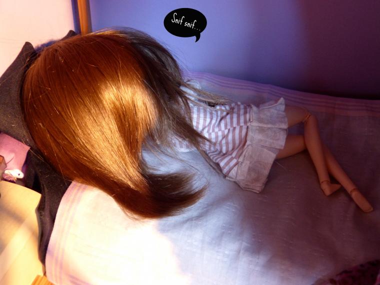 Remue ménage dans la dollhouse ! (1/3)