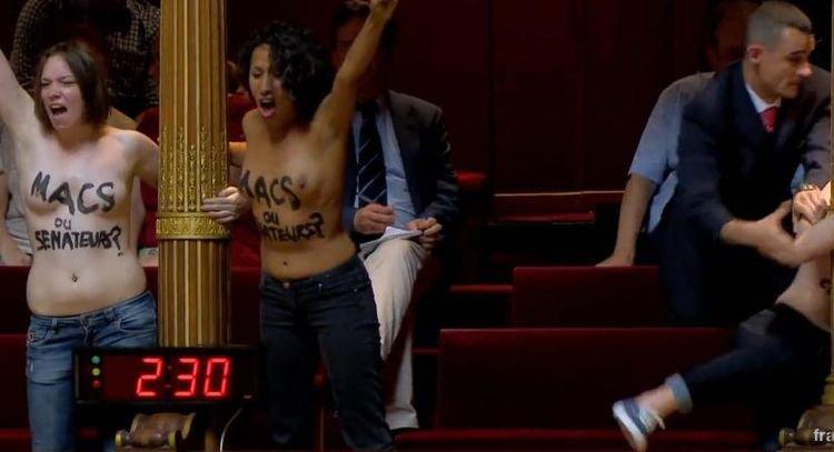 Des Femen au Parlement: «Etes-vous macs ou sénateurs ?» - liberation.fr