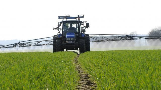 Loi d'avenir agricole. Le Sénat a adopté le projet de loi - ouest-france.fr