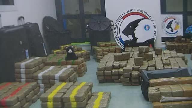 Trafic de drogue à Montagnac : 4 personnes arrêtées, 764 kg de cannabis saisis - france3-regions.francetvinfo.fr