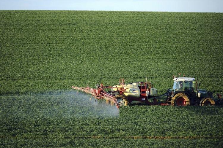 Une production alimentaire suffisante qui n'exclut pas les crises dans les 10 ans - AFP