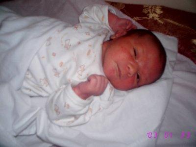 la naissance de adoulti