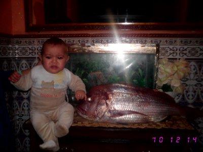 l houta jaha dikfel aquarieum kharjette