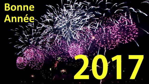 Bonne Année 2017 !!!!