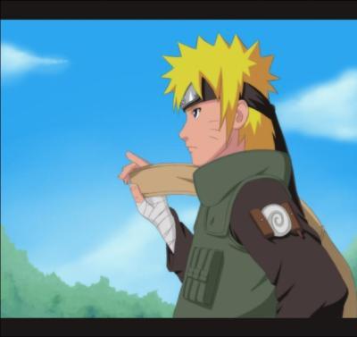 Fiction n°364 : Akatsuki-et-Naruto