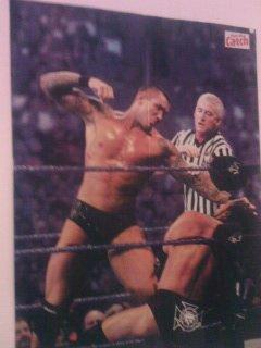 Randy vs Triple H