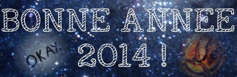 Rétrospective 2013 !
