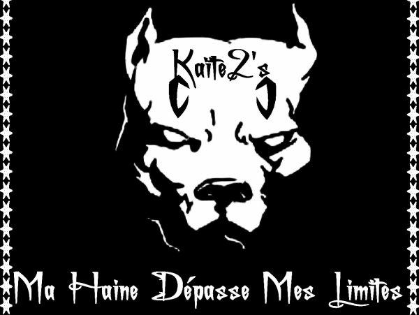 Kaite2's