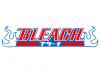 Bleach-Kariya