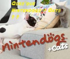 ♥ Présentation de moi et mes chiots ♥ ( Nintendogs + Cats ♥ )