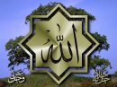 Photo de Islam-Veridique