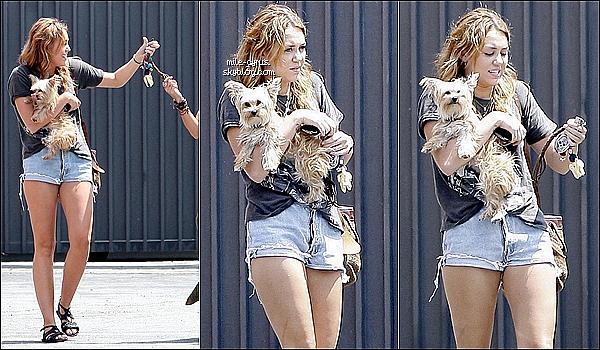 .  Miley en microshort a été aperçu dans un parking de Beverly H. avec sa chienne Lila et sa danseuse Jen ce 12 août.    Rappel : ce soir à 2h (17h au USA) a lieu l'évenement incontournable : i.am.First de Will.i.am des Black Eyed Peas (article précédent). .