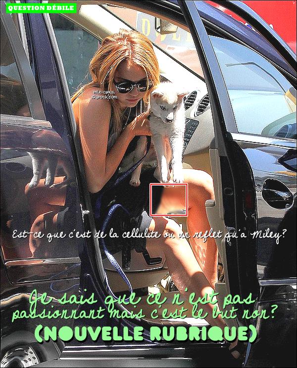 . Miley et son chiot Floyd étaient à l'aéoroport de LAX, direction le Michigan ce 15juillet11.  Elle s'y est rendu pour rejoindre son petit ami Liam qui tourne le film « AWOL » là-bas. MilMil y est restée une bonne semaine..