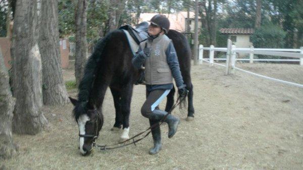 Avant que je vous présente les chevaux et poneys des Plaines ,un peu de Moi