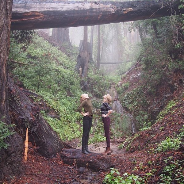 Le 5 Mars Taylor a fait un petit road trip avec son amie - le mannequin Karlie Kloss - en Californie du Nord !