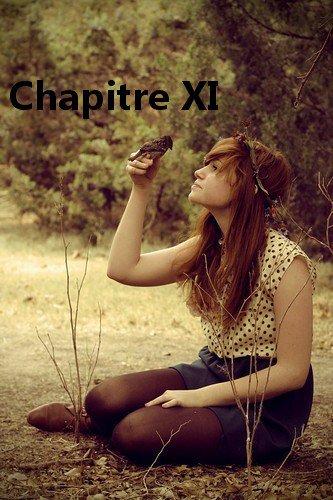 #Chapitre 11#
