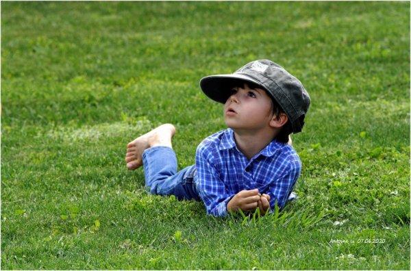 Antoine surveille le ciel ....les rapaces ne sont pas très loin .