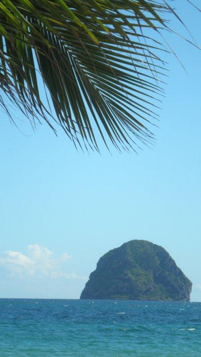 Les Antilles, Richesses et Douceurs....