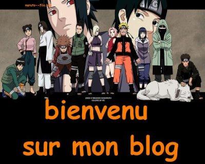 Bienvenu sur mon blog!!!