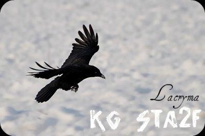 KG Sta2f - Lacryma  (2011)