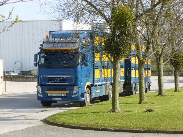 Transport Tirel
